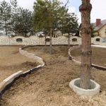 Montaż betonowych osłon na drzewa