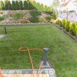 Trawnik z rolki 3