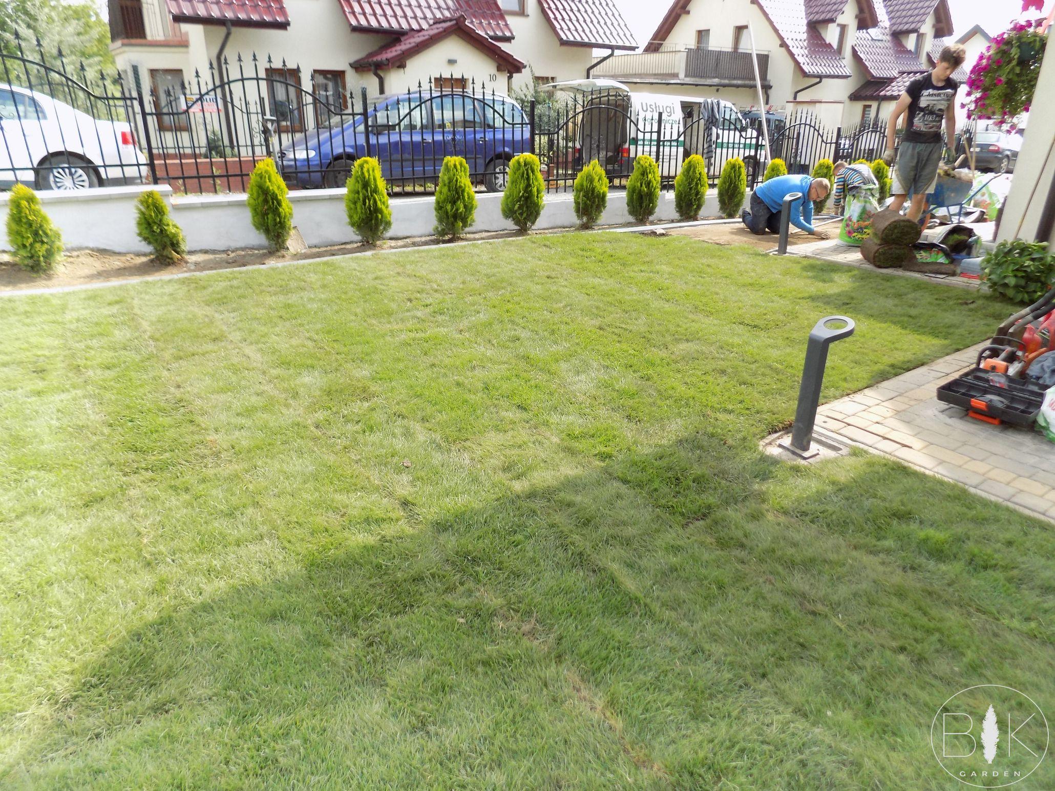 Trawnik z rolki efekt końcowy