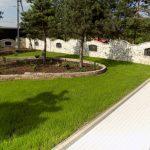 Trawnik z siewu + rabta roślinna