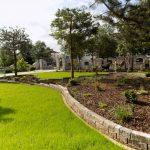 Trawnik z siewu + rabta roślinna + duże sosny