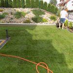 Wałowanie trawy z rolki