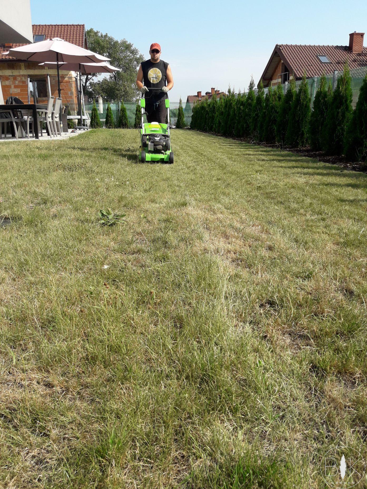 koszenie trawnika przed regeneracja