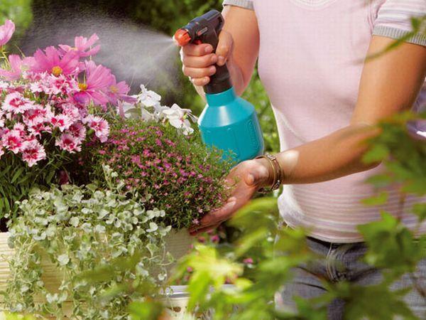 oprysk kwiatow