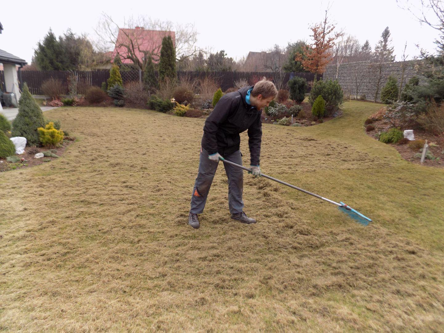 reczna wiosenna wertykulacja trawnika