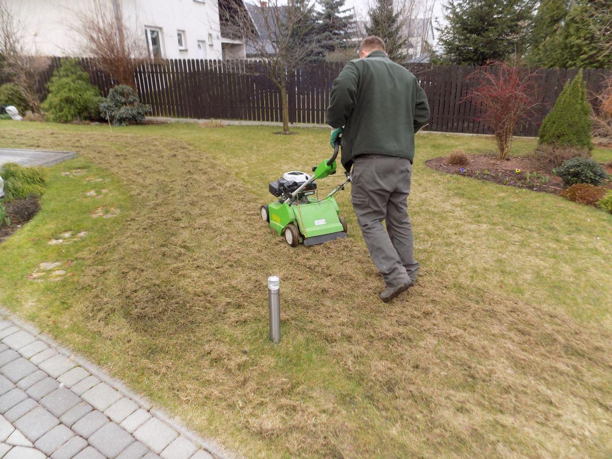 wertykulacja trawnika 2