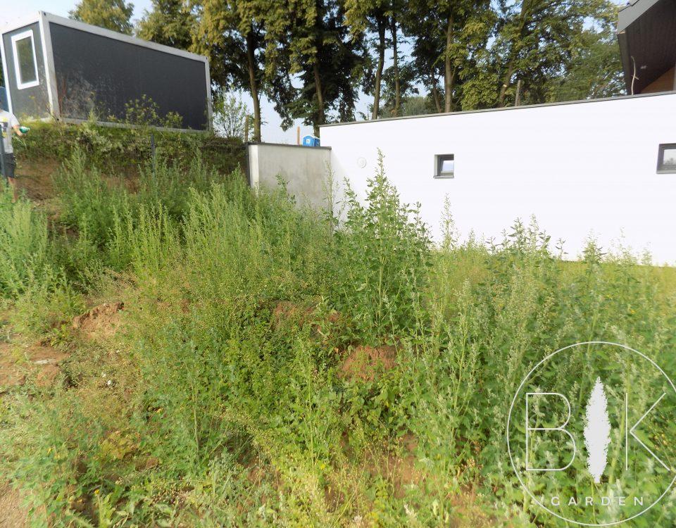 Usuwanie chwastów przed założeniem ogrodu