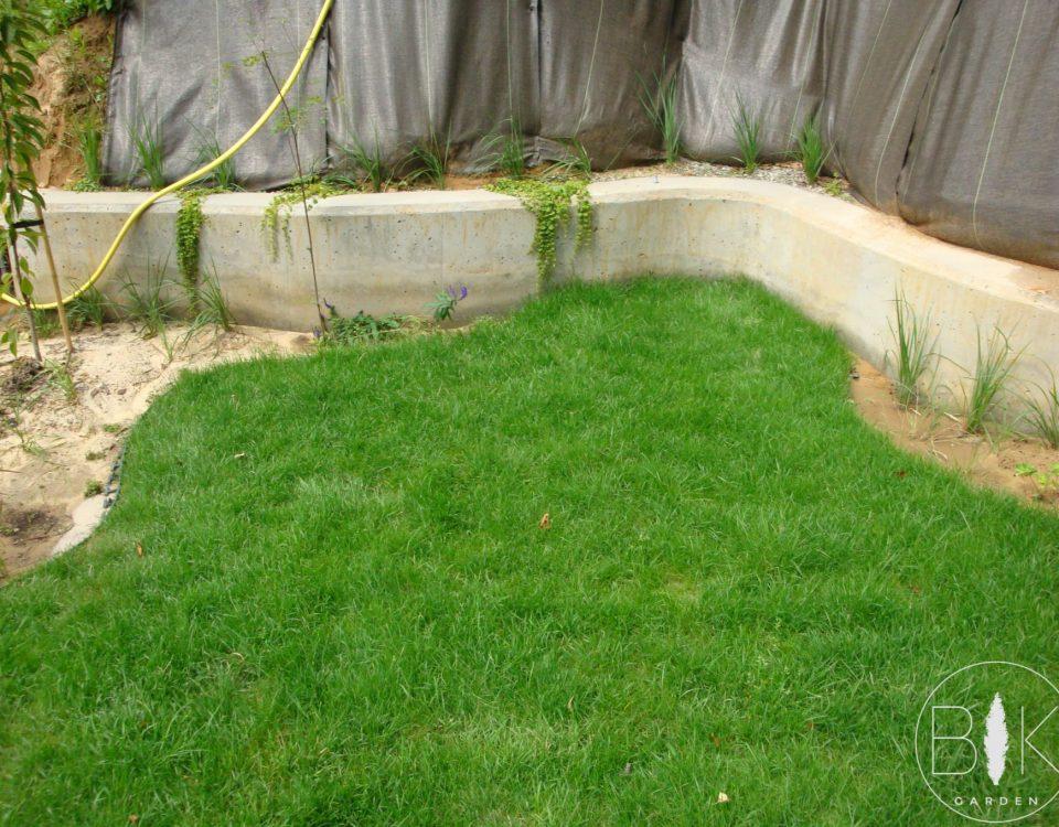 Założony trawnik z rolki 2